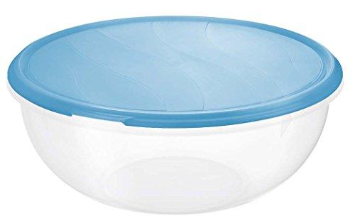 Rotho 1704506644 Teig- und Frischhalteschüssel Rondo aus Kunststoff (PP), Inhalt 6 l, ca. 32.5 x 32 x 13.5 cm, BPA-frei, transparent/blau