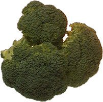 amorebio Bio Broccoli (1 x 1000 gr)