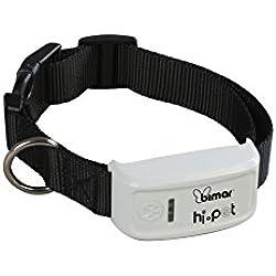 Collier GPS pour chiens et chats