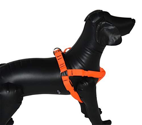Hundebrustgeschirr Hund Halsband orange mit LED 45-60 cm Umfang