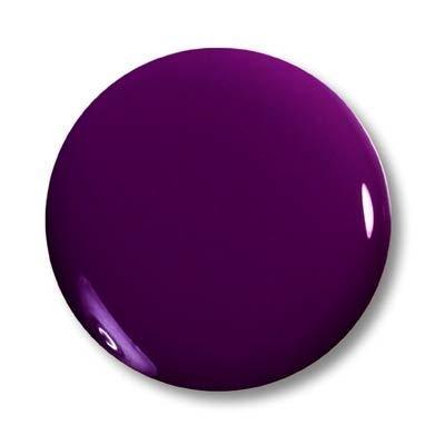 Magic Items Magic Poudre acrylique de couleur – Violet foncé n ° 1
