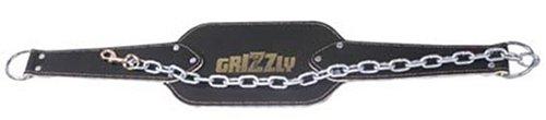 Leder-dip (Grizzly Fitness DIP-Gürtel Leder mit Kette und Clip Verschluss 8551–04)