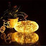 Dephen Solar Weihnachten Lichterkette 20ft 120LED Warm Weiß Outdoor Wasserdicht Kupfer Draht Lichterkette Lichterkette Ambiente Beleuchtung für Outdoor Garten Hochzeit Home Dekoration