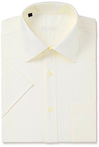 Raymond Men's Business Shirt