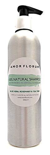 100% NATÜRLICHES SHAMPOO - Mit ROSEMARY & TEEBAUM - 250ml - von AMOR FLORUM - Kein SLS, keine Parabene, keine Chemikalien. Niedriger Schaum, einfache Spülungsformel.