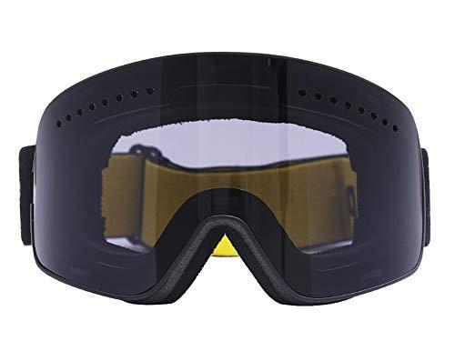 APJJ Doppelschicht Anti-Fog Ski Goggles HD Zylinder Skibrille Tag Und Nacht,E