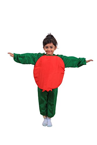 Fancy Steps Fruit Pomegranate 6 to 8 Years Fancy Dress Costume for Kids Birthday Gift,Multicolor