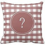 Red Apple Aqua Gingham Pillowcase Pillow Covers 1616 Pillow Case Cover Cushion