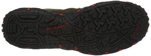 Columbia Herren WOODBURN™ Plus Outdoor Fitnessschuhe Braun (Cordovan/gypsy 231)