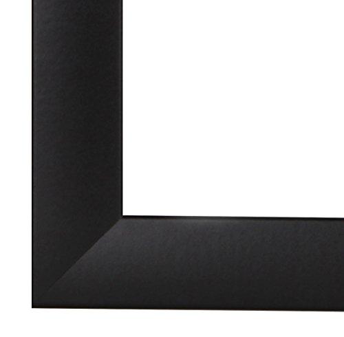 EUROLine35 Bilderrahmen im DIN A0 Format für 84,1 cm x 118,9 cm Bilder Farbe Silber Matt inkl. entspiegeltem Acrylglas