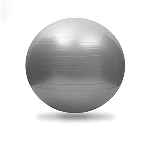 Brave Navigator Anti-Burst Thick & Non-Slip Exercise Ball with Foot Pump Grey 55cm