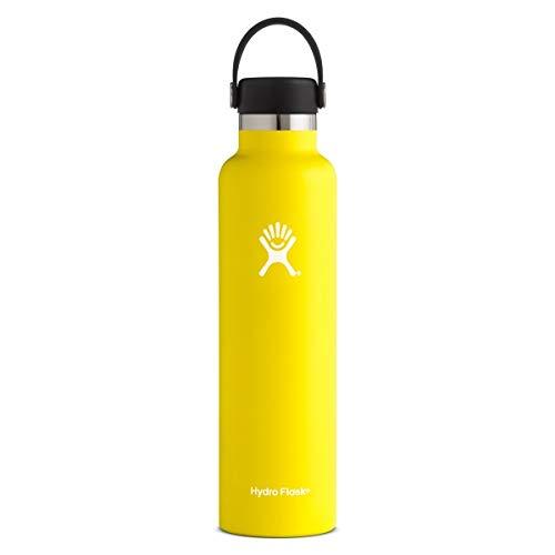 Hydro Flask S24SX740 Mundstück, 625 ml Standard Trinkflasche 710 ml Lemon