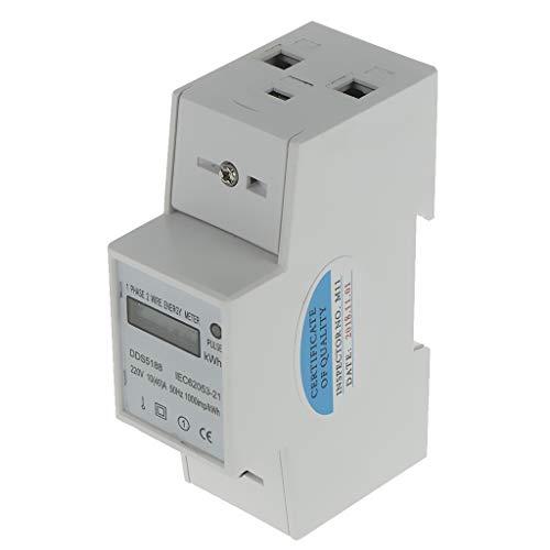 FLAMEER Professionelle Digitale Stromzähler Elektrozähler Strom Zähler Wattmeter - 1 Phase 2 Wire 10(40) A 140cm