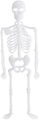 """infactory Halloweendekoration: Nachleuchtendes Deko-Skelett """"Spooky Bones"""", 32 cm, 4er-Set (Halloween-Partys-Dekorationen)"""