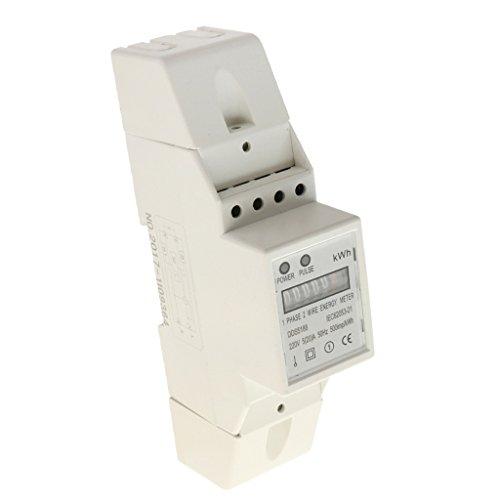 Baoblaze Potenza kWh Energia Elettrica Sub Meter Montaggio su Guida DIN Standard Accessori per Giardino - 1 Fase 2 Filo 5 (20) A 140cm