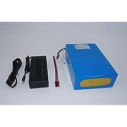 48V 20Ah 960Wh Akkupack Pedelec E-Bike Scooter Lithium-Ionen Batterie Battery incl. BMS + Ladegerät