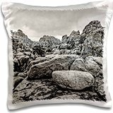 photography-landscape-hidden-valley-at-joshua-tree-in-black-and-white-16x16-inch-pillow-case