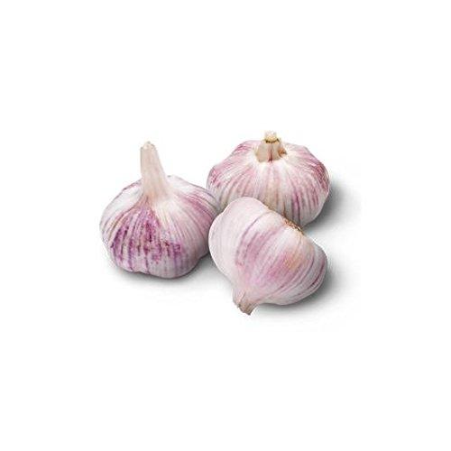 ajo-morado-de-banyoles-para-siembra-05-kg