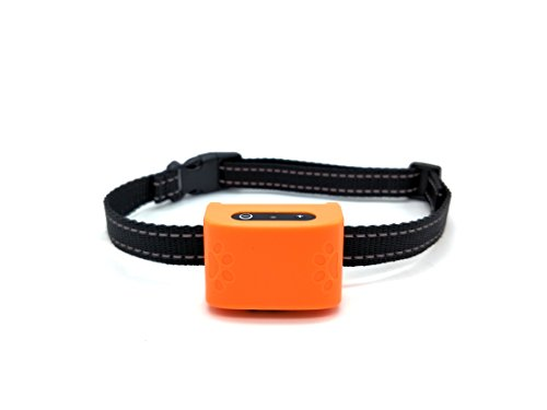 Hund Anti Bark Halsband, wodondog Sound & Vibration keine Bark Halsband, keine Schmerzen oder Schaden für kleine mittelgroße Hunde (Orange) -