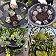 """Plantopia Easy Fill 14"""" Top And Side Planting Hanging Baskets X 2Plantopia Easy Fill 14"""" Top And Side Planting Hanging Baskets X 2"""