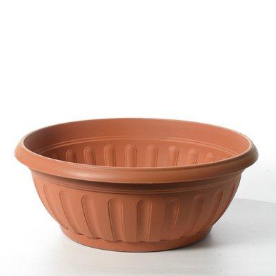 COUPE FENICE 35 cm AVEC SOUCOUPE Terre-cuite (matière plastique)