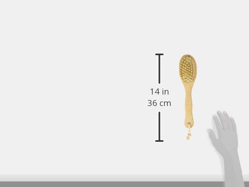 Zoom IMG-1 opportunity spazzola massaggiante zaino