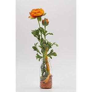Kleines Tischgesteck mit orangefarbenen Ranunkeln+Cabbage Roots-Tischdeko mit künstl.Blumen