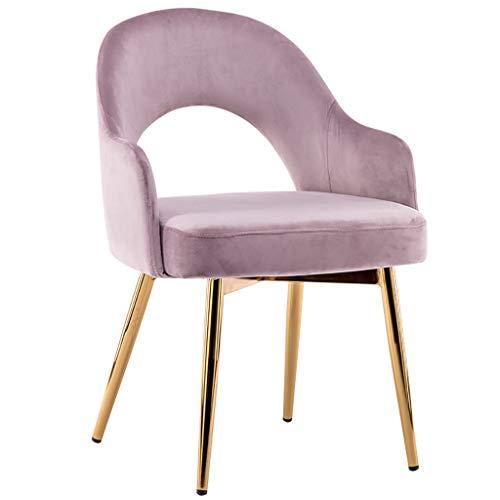 Nordic Dining Chair, Sessel aus Schmiedeeisengewebe/Coffee Chair/Leisure Chair, ergonomisch gestaltet, für Restaurant/Büro/Theke/Familie -