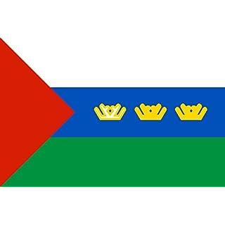 DIPLOMAT Flagge Tyumen Oblast 1995-2008 | Tyumen Oblast, flag 1995?2008 | Tjumenja provinco, la flago 1995?2008 | ????????? ??????? | Querformat Fahne | 0.06m² | 20x30cm für Flags Autofa
