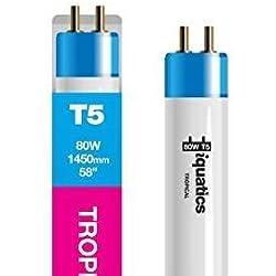 "3 x iQuatics Acuario 80w T5 Bulbo - Tropical / Rosa Hue -Color que realza / Crecimiento-Estándar 80w-58 ""-1450mm"