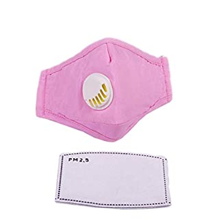 ACVIP PM 2.5 Dust Face Mouth Mask for Kids with 2 Pcs Activated Carbon Filter Insert (Pink)