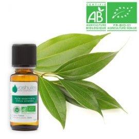 huile-essentielle-bio-de-cannelle-de-chine-10ml