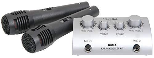 Skytec Set Karaoke con mini amplificatore audio e 2 microfoni (volume regolabile, ultracompatto, effetto eco, RCA)