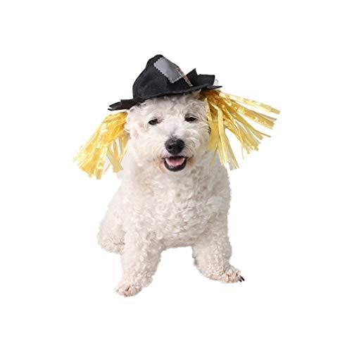 Hunde Kostüm Vogelscheuche - Balacoo Vogelscheuche Hund kostüm-Vogelscheuche Hut Haustier kostüm Halloween Katze Haustier Kopfbedeckung kostüm Party Cosplay zubehör für welpen Katze kätzchen