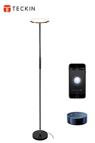 Stehlampe LED Deckenfluter Stehleuchte Dimmbar,TECKIN Wlan Smart Alexa Wifi Standleuchte Fernbedienbar,Funktioniert mit 3000K Warmes Weißes Licht für Schlafzimmer Wohnzimmer Büro(Schwarz)