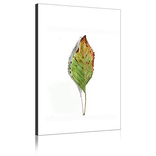 Gemälde Grüne Pflanze Verwelkte Blätter Wand Kunst Moderne Kunstwerke Drucke Auf Leinwand Für Wohnzimmer Dekor (Kein Rahmen,100 x 160 cm) ()