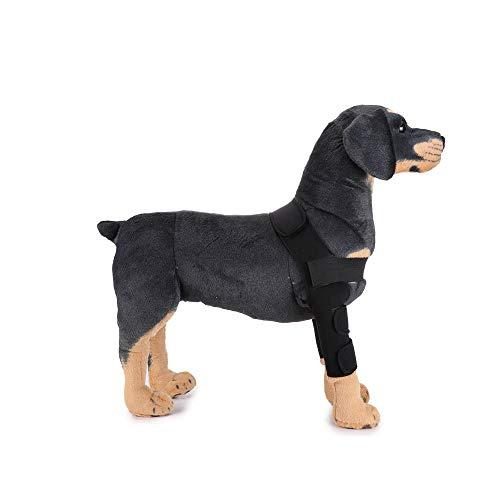 COL PETTI Pet Capucha Rodilla Almohadillas Perro Leggings Pet Protector Perro Lesiones Quirúrgicas Botas,L