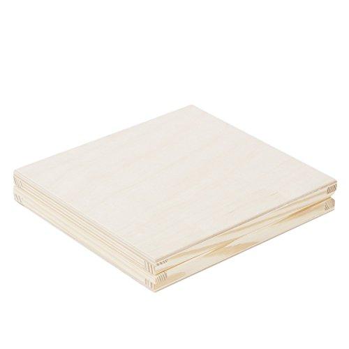 CD Box 16,5 x 14,5 x 2,5 cm Holzkiste Klappkiste flache Kiste Holz natur (Holz-cd-box)