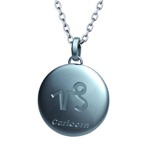 Sternzeichen Halskette Edelstahl Steinbock von Gariella® - Lieferung in original Schmuckschatulle