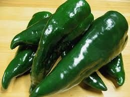 Chili Poblano - piment Poblano - 10 graines