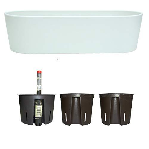 Blumenkasten Kunststoff + Bewässerungssystem Set5 Kunststoff Flori Pflanzschale Weiss für Hydrokultur L 26.5cm B 10.0cm H 08.0cm
