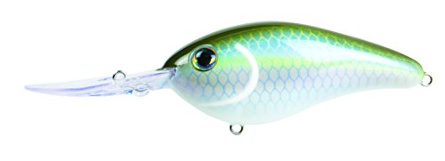 Strike King Pro-Model 6XD Deep Diving Süßwasser Crankbait, Sexy Green Shad -