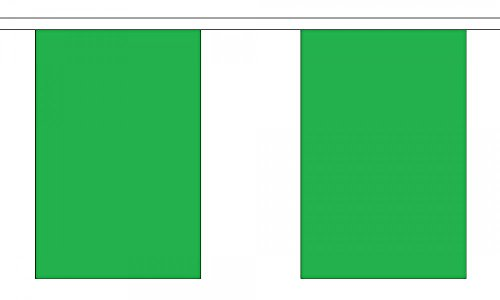 Guirlande drapeau en polyester uni vert 9 m (30 ') avec 30 fanions