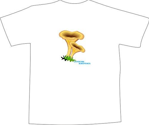 T-Shirt E400 Schönes T-Shirt mit farbigem Brustaufdruck - Logo / Grafik - minimalistisches Design - Falscher Pfifferling im Wald Schwarz