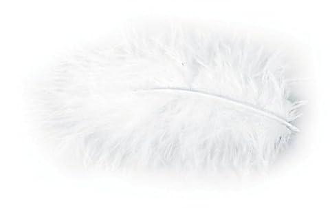 Plume Blanche - Chaks 0702-00, Pochette 10g de plumes 5-10cm,
