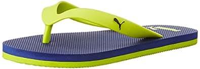 Puma Unisex OdiusDP Surf The Web and Lime Punch Flip Flops Thong Sandals - 10 UK/India (44.5 EU)