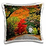 - Highways - USA, New Hampshire, Andover. Road lined in fall color. - 16x16 inch Pillow Case