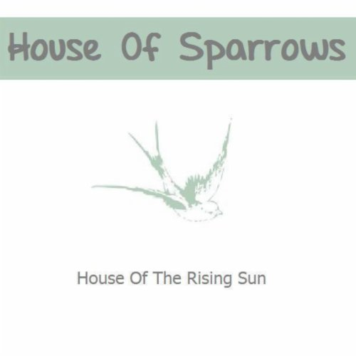 House Of The Rising Sun Cover Demo Di House Of