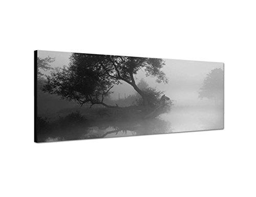 Keilrahmenbild Panoramabild SCHWARZ / WEISS 150x50cm Fluss Baum Nebel Morgendämmerung