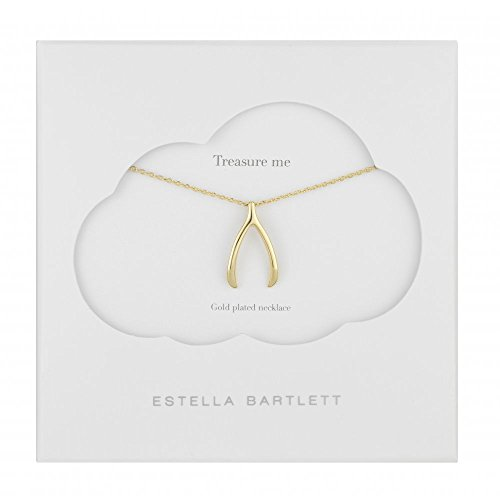 estella-bartlett-gold-plated-lucky-wishbone-necklace